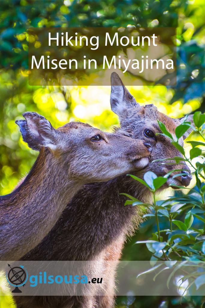 Hiking Mount Misen in Miyajima
