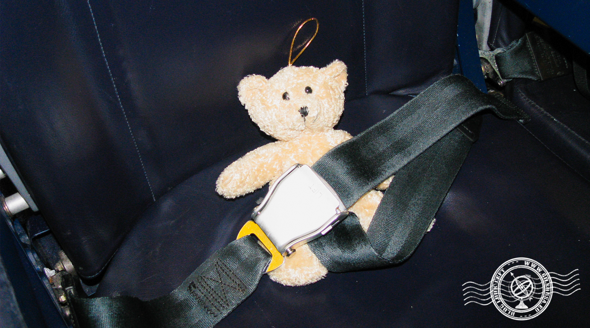 Teddy Bear ready for departure