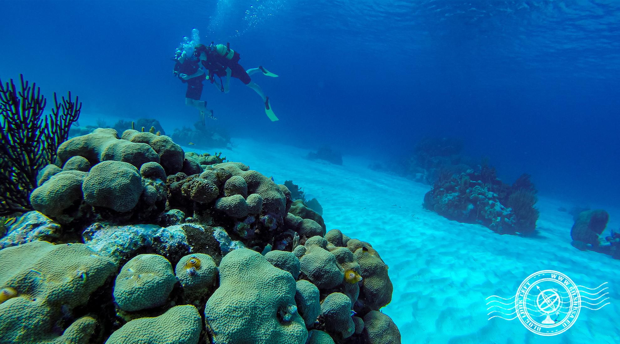 Primeiro mergulho em Punta Perdiz